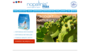 Nopalina | Naturalne Odchudzanie | Oczyszczanie Organizmu