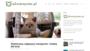 Transporter dla kota - jaki kupić, wybrać? RANKING 2019