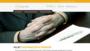 OcenyStron.pl – oceny stron internetowych